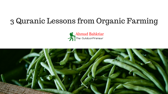 3 Quranic Lessons from Organic Farming
